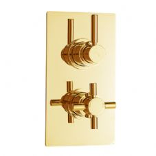 Gold Concealed Shower Valves